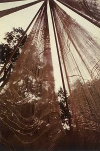 About Judith B Miller, hand-woven dreamer's teepee